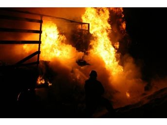 Düzce İtfaiyesi, 2014 Yılında 229 Yangına Müdahale Etti