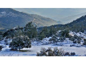 Milas'ta Antik Kentte Kar Sürprizi