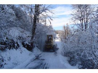 Ereğli'de Kar Yağışı 29 Köye Ulaşımı Kapattı