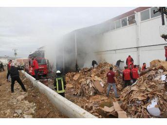 Karton Kutu Fabrikasında Çıkan Yangın Korkuttu...