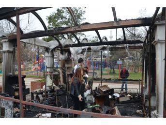 Fatsa'da İş Yeri Yangını
