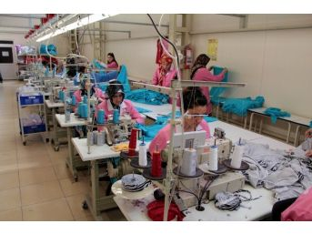 Samsun'da Sadece 229 Firma İhracat Yapıyor
