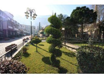 Amasya Belediyesi 3 Bin Ağaç Dikti