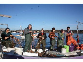 Giresun'un Balıkçı Kadınları