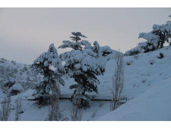 Kartpostalı Aratmayan Kar Manzaraları
