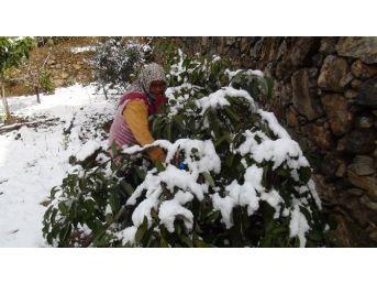 Antalya'da Kar Çiçek Açan Ağaçları Beyaza Bürüdü