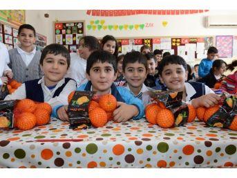 Mersin'de 50 Bin Öğrenciye 100 Ton Portakal