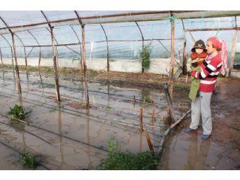 Kumluca'da Seralar Yine Sular Altında Kaldı