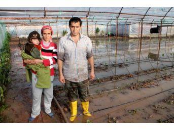 Kumluca'da Şiddetli Yağışta Dere Taştı Seraları Su Bastı (2)