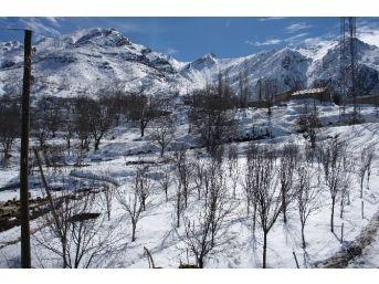 Dağlıca Köyü Sakinleri Tepkili