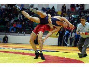 Milli Güreşçiler, Bulgaristan'da Minderi Titretecek