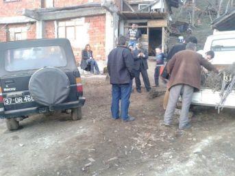 Azdavay'da Çiftcilere Ceviz Fidanı Dağıtıldı