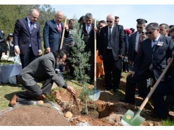 Mersin'de Özgecan Için Hatıra Ormanı Oluşturuldu...