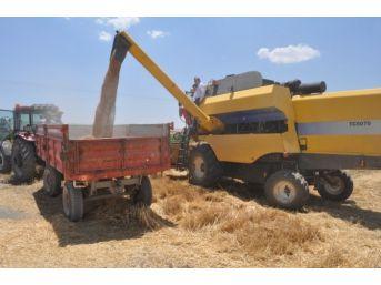 2 Bin 395 Çiftçiye 4 Milyon Lira Tarımsal Destek Verilecek