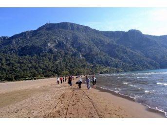 Çine Kültür Derneği İztuzu Plajı İçin Yürüdü
