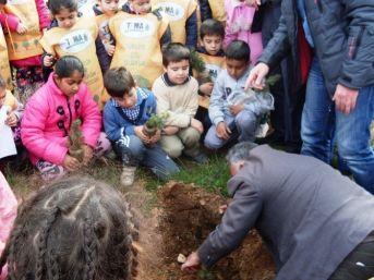Ayvalık'ta Öğrenciler Ağaç Dikerek Orman Sevgisini Öğrendi