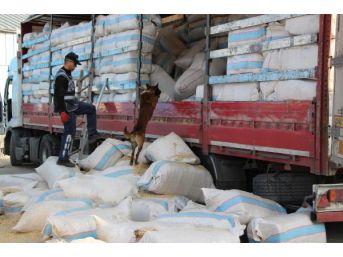 Saman Çuvalları Arasından 200 Bin Paket Kaçak Sigara Çıktı