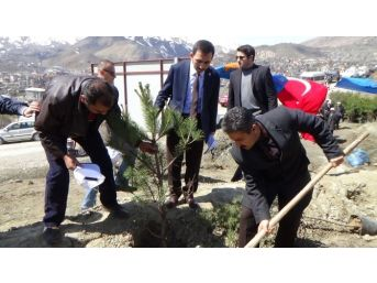 Hakkari'de Cumhurbaşkanı Erdoğan Hatıra Ormanı Açıldı