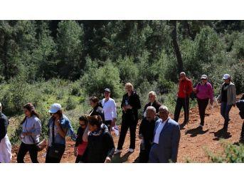 Mezitli'de Doğa Yürüyüşü