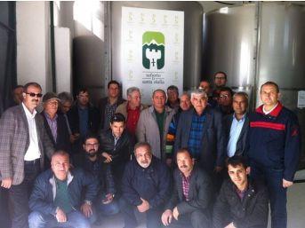 Mut Zeytinyağı İspanya'da Tanıtıldı