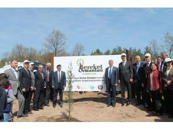 Sakarya'da Bereket Ormanı Oluşturuldu
