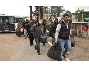Datça'da Karayolunda 70 Kaçak Yakalandı