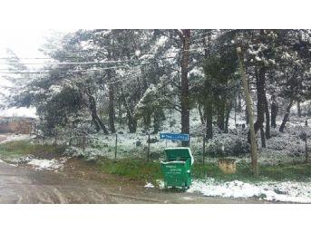 Nisan'da Turgutlu'da Kar Yağışı