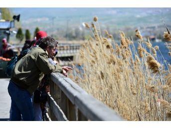 Bahar Sıcaklarının Ortaya Çıkmasıyla Ankaralılar Parklara Koştu