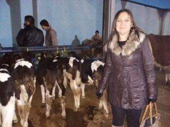 Niğde Kırmızı Et Üreticileri Birliği Başkanı Aliyye Yılmaz
