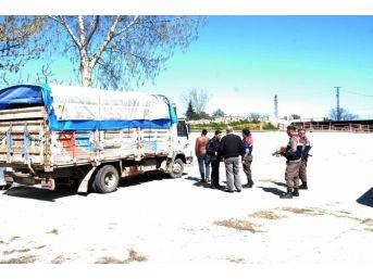 20 Kaçak Dana İle Yolda Yakalandılar
