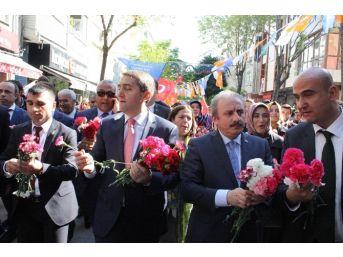 Ak Parti Sevgi Yürüyüşleri İstanbul 3.bölgede Devam Etti