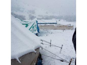 Kar Yağışı Yaylacıları Mahsur Bıraktı