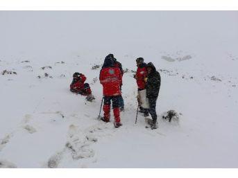 Kar Yağışı Nedeniyle Dokuz Çoban Ve Beraberindeki Bin 800 Küçükbaş Hayvana Halen Ulaşılamıyor