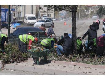 Niğde Belediyesinden Bahar Çalışması