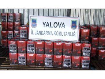 Yalova'da Kaçak Motorin Operasyonu