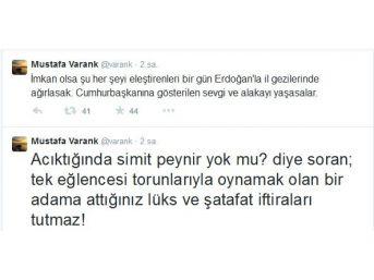 Varank'tan Cumhurbaşkanı Erdoğan'ı Eleştirenlere Tweetli Cevap
