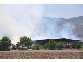 Yangın, 600 Balya Samanı Küle Çevirdi