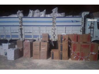 Jandarma, 50 Bin Paket Kaçak Sigara Ele Geçirdi