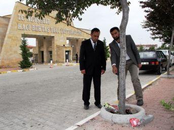 Agd'den Üniversitede Düzenlenen Bahar Şenliklerine Tepki