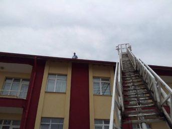 Çatıdan Düşen Sığırcık Yavrusuna İtfaiye Sahip Çıktı
