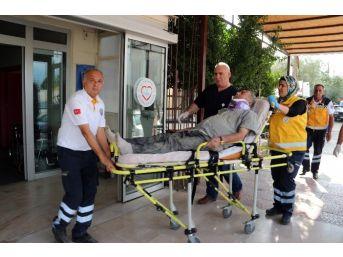 Kayısı Yüklü Kamyon Şarampole Düştü: 2 Yaralı