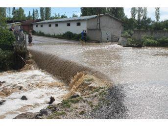 Başkent'te Aşırı Yağış Dereyi Taşırdı, 22 Hayvan Telef Oldu
