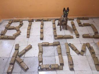 Bitlis'te 164 Kilo Eroin Ele Geçirildi