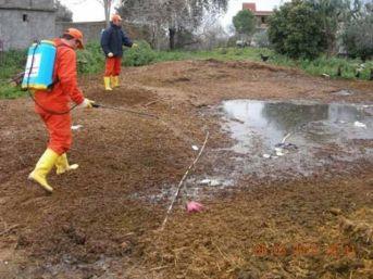 Düzce Belediyesi Sivrisinek İle Mücadeleye Başlıyor