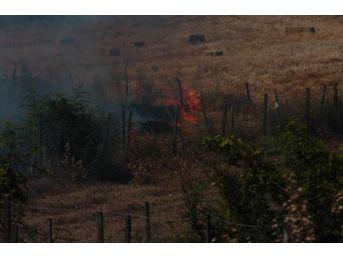 Bayramiç'te Tarım Arazisinde Yangın