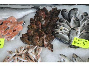 Akçakoca'da Ramazan Ayında Balık Tüketimi Azaldı