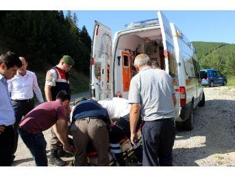 Kastamonu'da Otomobil Tarlaya Uçtu: 5 Yaralı