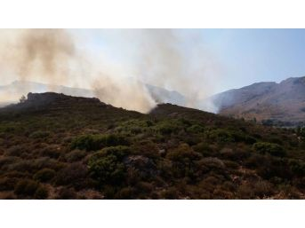 Bodrum'daki Yangın Hala Kontrol Altına Alınamadı
