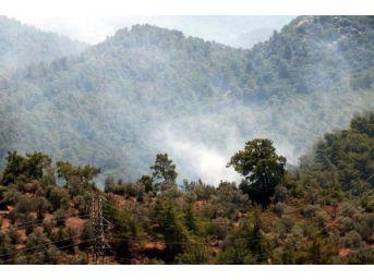 Marmaris'te Otluk Yangını Ormana Sıçramadan Söndürüldü