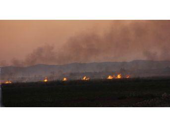 Şanlıurfa'da Anız Yangınlarının Önüne Geçilemiyor